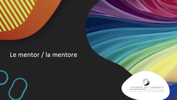 4e capsule - mentor