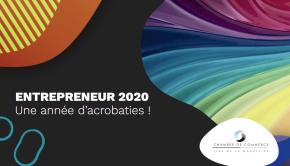 Entrepreneurs 2020