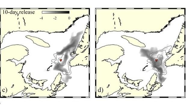 851374-oceanographe-uqar-daniel-bourgault-equipe