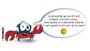 crabe-masque-consent