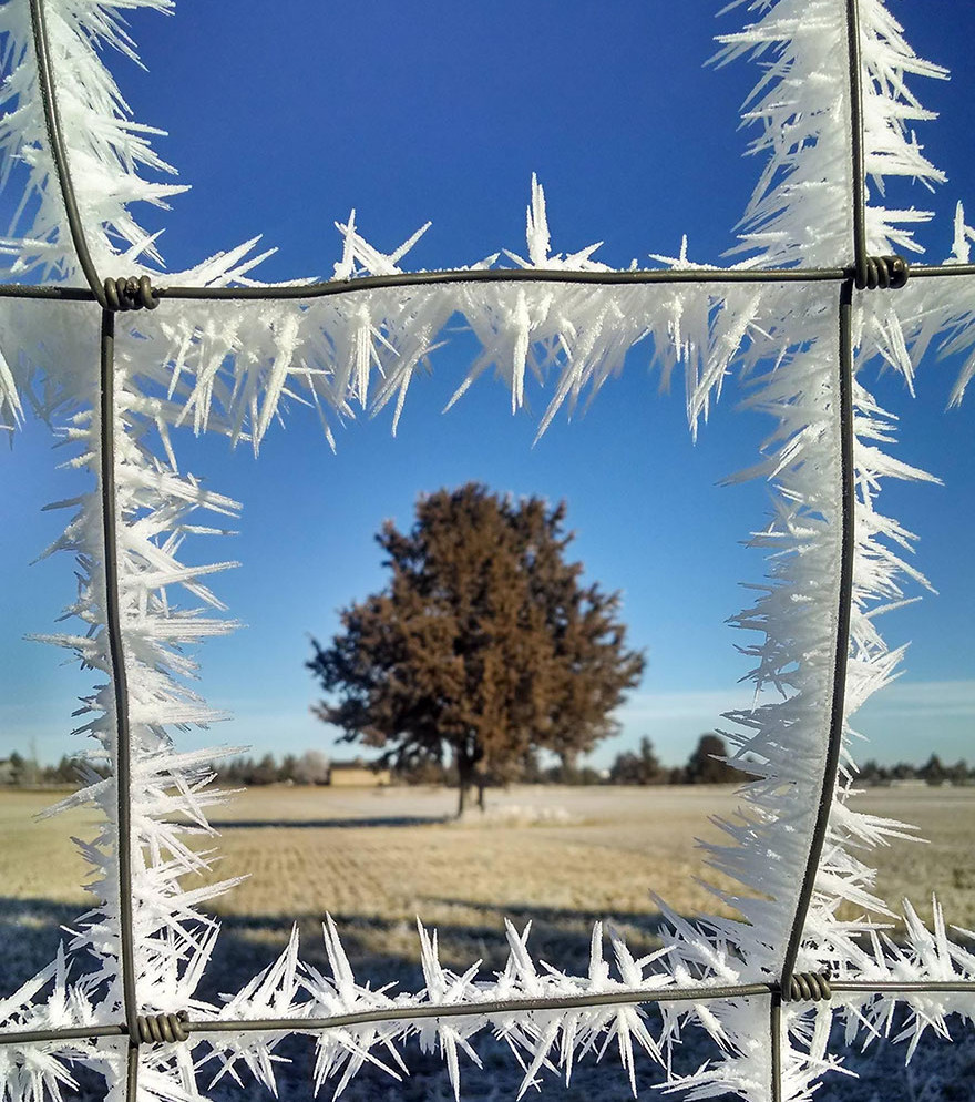 des-cristaux-de-glaces-se-sont-formes-de-part-et-d-autre-de-cette-cloture_68245_wide
