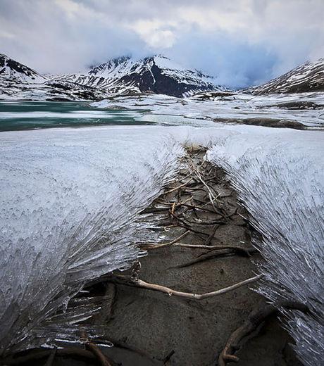 meme-la-vegetation-entourant-ce-point-d-eau-a-gele_68249_w460
