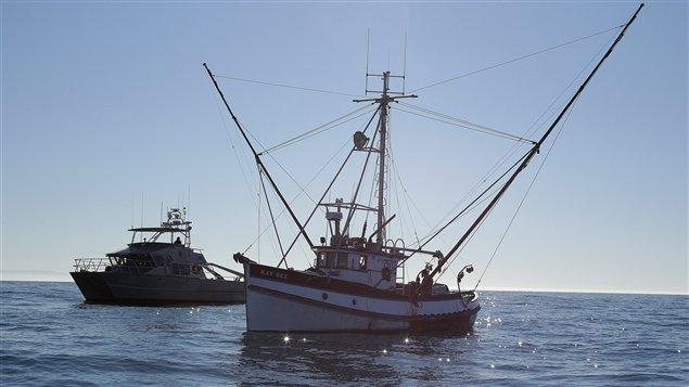 Mort d un aide p cheur le port du gilet devient - Port du gilet de sauvetage obligatoire ...