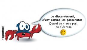 crabe-discernement