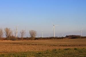 Un champ d'éolienne