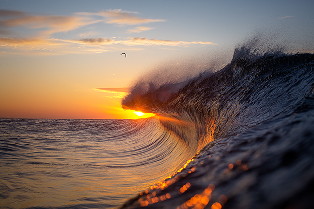 WarrenKeelan_Suncrest