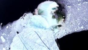 150616_qr5rk_iceberg-labrador_sn635-620x350
