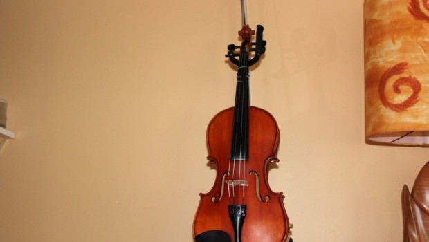 Violon, Wordpress