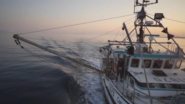 bateau-peche-mer-2