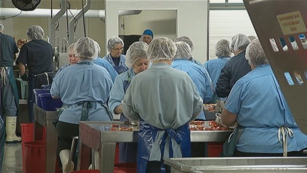 homard-usine-travailleurs