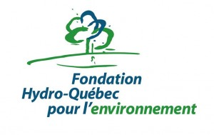 fondation-hydro