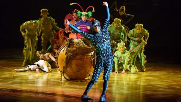 cirque-soleil-ovo-francois-guillaume-leblanc