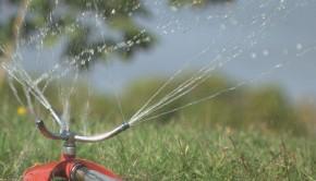 eau-potable-arrosage-gicleur-pelouse-2