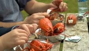 homard-cuit-festival-grande-entree-iles-de-la-madeleine