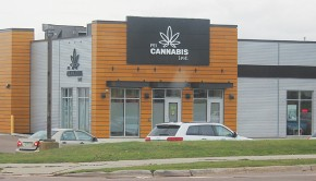 cannabis_summerside