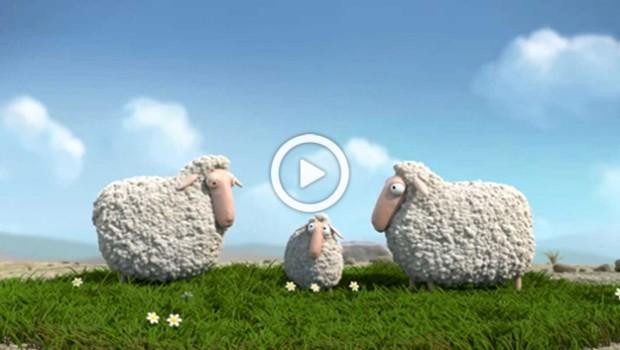webtv_lambs