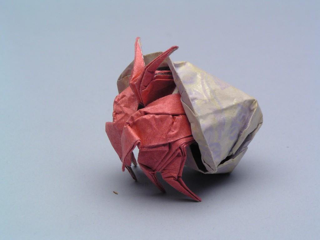 hermit_crab-wpcf_1024x768