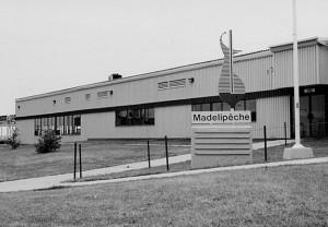 madelipeche3-300x208