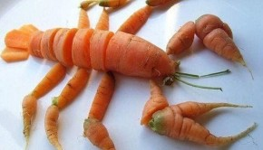 image-acadienne-homard-vegan-carotte