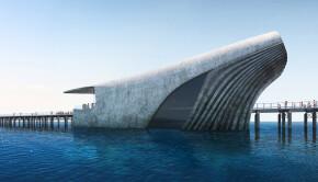Le-Australian-underwater-discovery-Centre-un-batiment-en-forme-de-baleine-semi-immergee-1