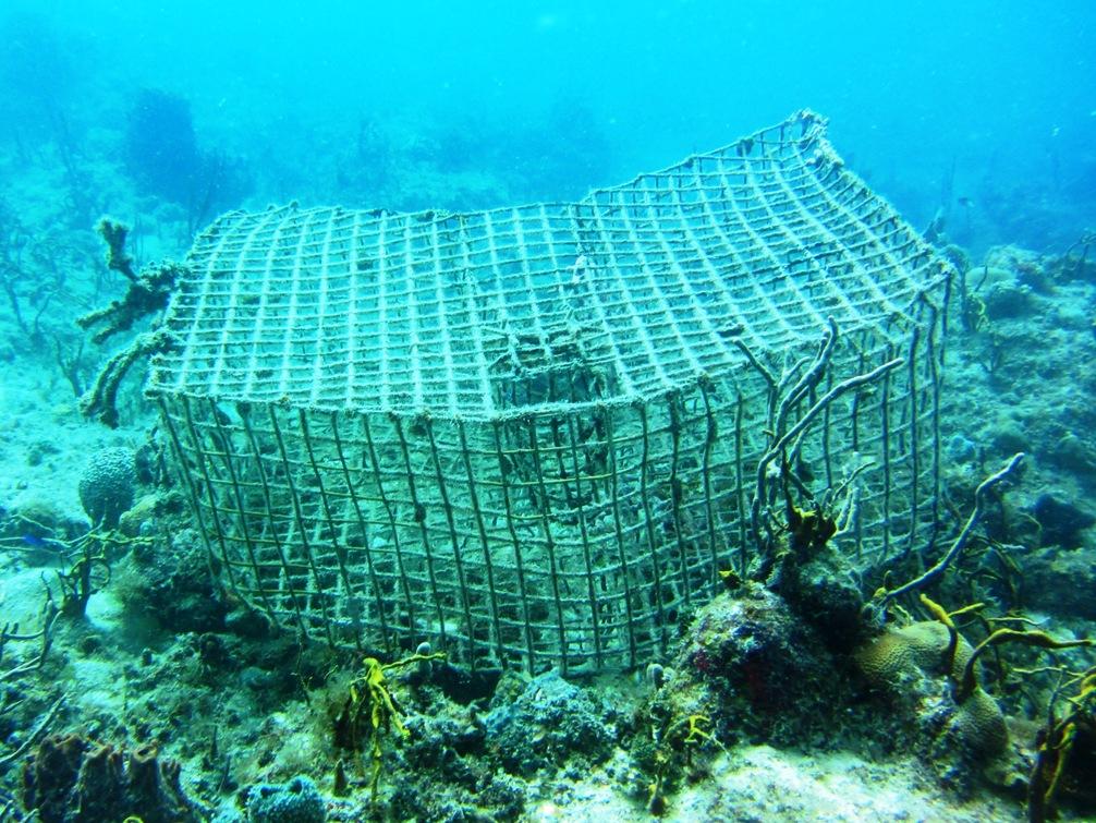 Underwater-Lobster-Trap